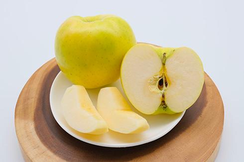 りんご こだわりフルーツHORITA