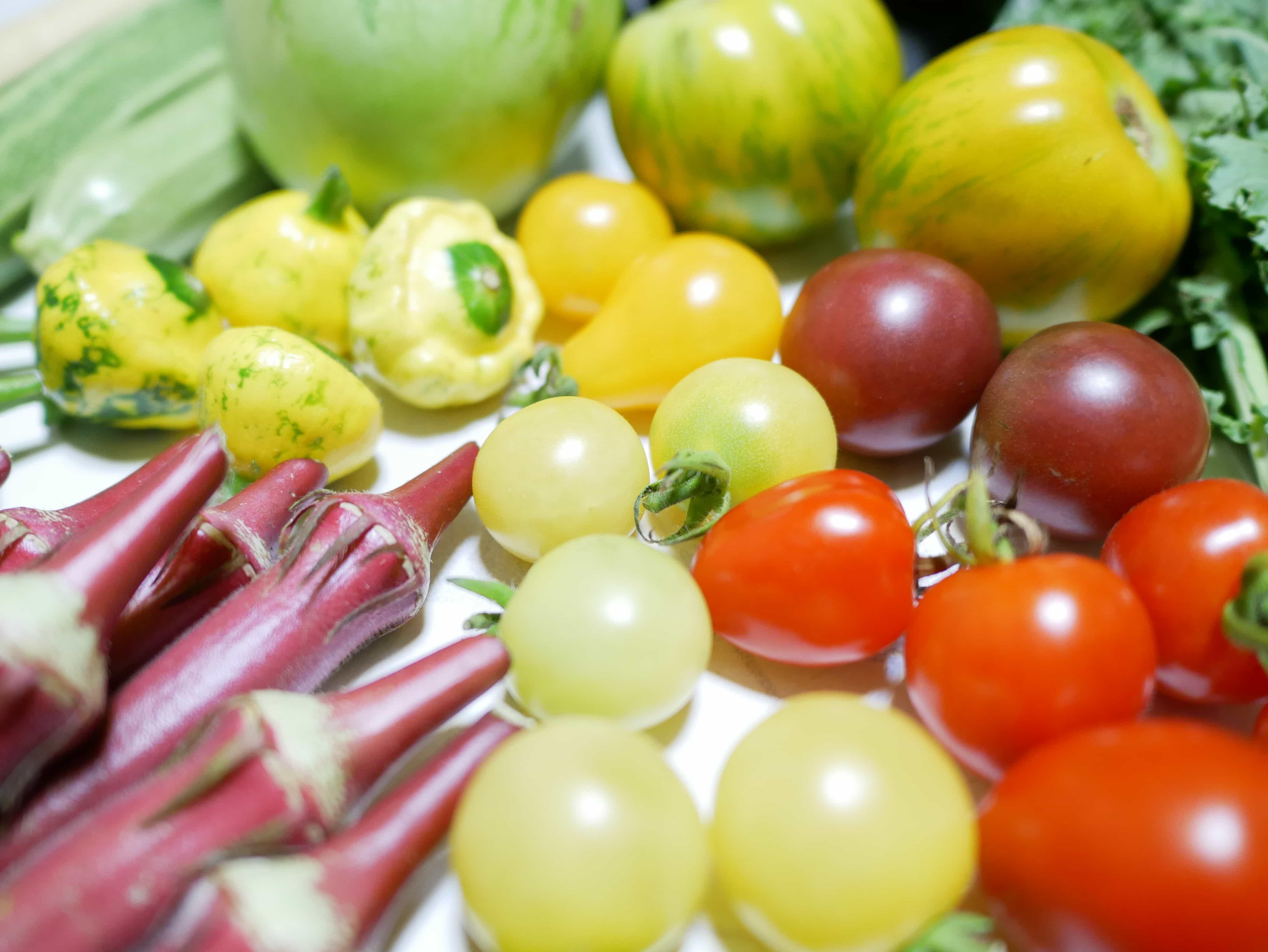 伝統野菜3